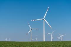 Moinhos de vento no campo Foto de Stock