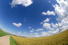 Moinhos de vento no campo curvado Foto de Stock