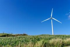 Moinhos de vento no monte Foto de Stock Royalty Free