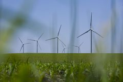 Moinhos de vento nos campos de milho Imagens de Stock Royalty Free