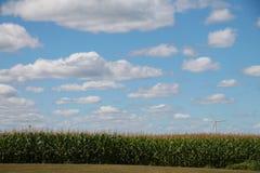 Moinhos de vento sob um céu azul nebuloso com milho Fotos de Stock