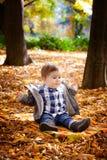 8 mois de garçon en automne Images libres de droits