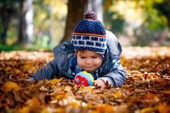 8 mois de garçon en automne Photos libres de droits