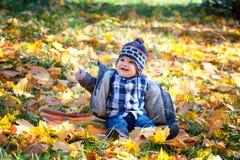 8 mois de garçon en automne Photos stock