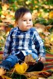 8 mois de garçon en automne Photo libre de droits