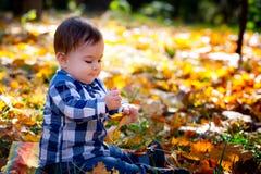 8 mois de garçon en automne Photographie stock libre de droits