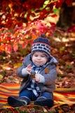 8 mois de garçon en automne Images stock