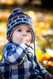 8 mois de garçon en automne Photographie stock