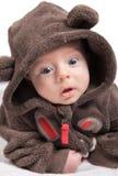 2 mois de portrait de bébé garçon Photos stock