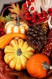 Moisson d'automne d'action de grâces Photo stock