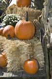 Moisson d'automne de chariot photos stock