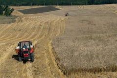 Moisson de blé Images libres de droits