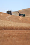 Moisson de blé dans Palouse, Washington Photos stock