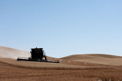 Moisson de blé dans Palouse, Washington Photographie stock libre de droits