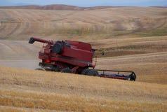 Moisson de blé, Palouse, Washington image libre de droits