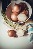 Moisson des oignons photos stock