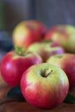 Moisson des pommes Photo libre de droits