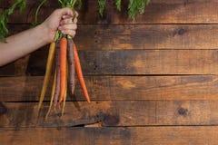 Moisson des raccords en caoutchouc Main avec le groupe de carottes avec des dessus sur la rouille Photos stock