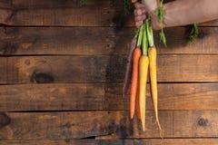 Moisson des raccords en caoutchouc Main avec le groupe de carottes avec des dessus sur la rouille Photo libre de droits