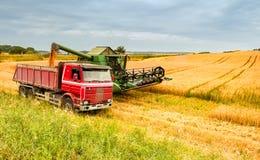 Moisson du blé en Europe Photos libres de droits