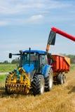 Moisson du blé pendant la fin de l'été Photographie stock libre de droits