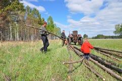 Moisson du bois de construction en Sibérie Images libres de droits