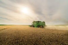 Moisson du champ de blé avec le cartel Photographie stock libre de droits