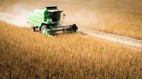 Moisson du champ de haricot de soja avec le cartel photos libres de droits
