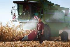 Moisson du champ de maïs avec le cartel photos libres de droits