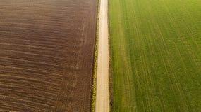 Moisson du maïs dans l'antenne d'automne image stock