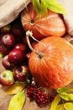 Moisson riche d'automne Photos stock