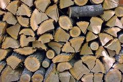 Moissonné pour le bois de chauffage d'hiver Photographie stock libre de droits