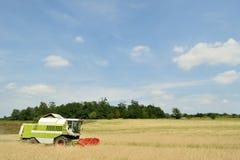 Moissonneuse de cartel dans le domaine de blé pendant la moisson Photos stock