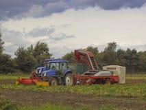 Moissonneuse de pomme de terre Photographie stock libre de droits