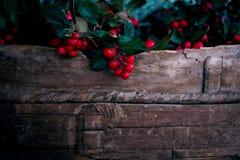 Moissonnez les baies rouges fraîches avec les feuilles vertes dans le panier en bois photos libres de droits