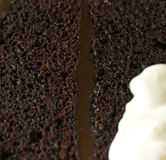 Moist chocolate cake Royalty Free Stock Image