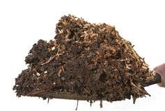 Moist woodchip mulch. Organic woodchip mulch on a shovel Stock Photo