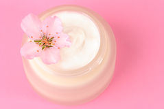 Moisturiser Cream Royalty Free Stock Photo