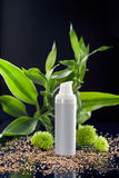Moisturizer do creme de face entre as folhas de bambu Imagens de Stock Royalty Free
