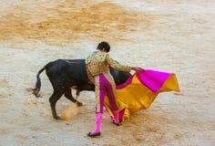 MOITA LISBON, PORTUGAL - SEPTEMBER 14: Matador and bull in toura Stock Photo