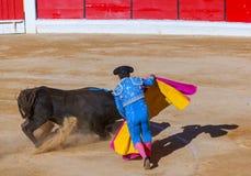 MOITA LISSABON, PORTUGAL - SEPTEMBER 14: Matador och tjur i toura Royaltyfria Foton