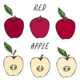 Moitié d'Apple rouge et Apple et feuille entiers Fruit frais régime de nutrition Automne ou collection végétale de récolte d'auto illustration stock