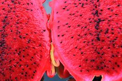 moitié de dragonfruit rouge Photo stock