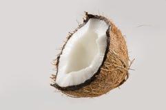 Moitié de la noix de coco Images libres de droits