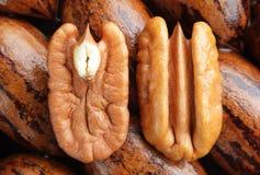Moitiés de noix de pécan sur le fond Image libre de droits