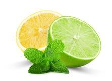 Moitié de chaux et de citron avec les feuilles en bon état d'isolement sur le Ba blanc Photographie stock libre de droits
