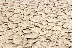 Mojaveöken arkivbilder