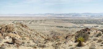 Mojaveöknen från 49 gömma i handflatan oasslingan Arkivbilder