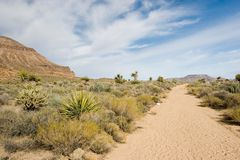 Mojave Royalty Free Stock Images