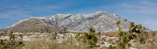 Mojave desert Royalty Free Stock Photos